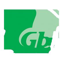 Оплатить сервис 1 Gb