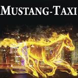 12 Онлайн оплата такси Такси Мустанг (Киев)